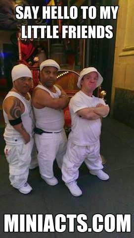 Midget escorts in chicago